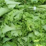 Recipe: Mustard Greens Recipes