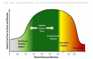 From Phinney and Volek's book - a good way to keep track of where your blood ketone levels should be