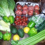 Farm Fresh To You Haul