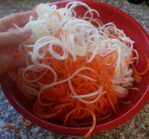 Bowl of noodley goodness - turnips and carrots