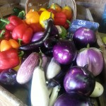 Gorgeous eggplants and peppers